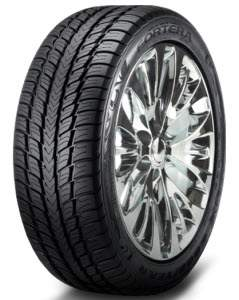 Goodyear Fortera SL Tire Review